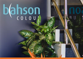 Bahson Colour Contact